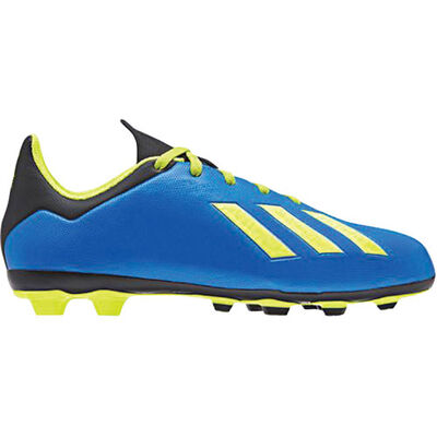 adidas Youth X 18.4 FG Soccer Cleats