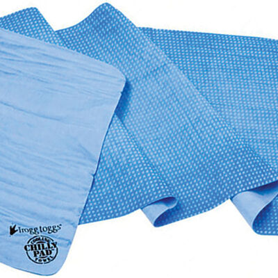 Chilly Pad, Blue, large