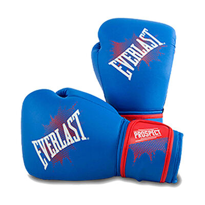 Everlast Youth 8oz Prospect Boxing Gloves