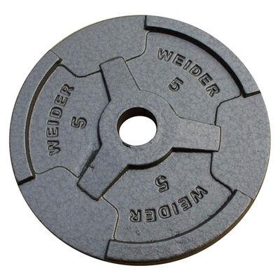 """Weider 5LB 1"""" Weight Plate"""