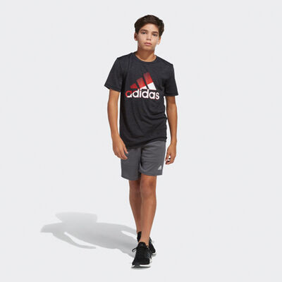 Boys' Sliced Badge of Sport Tee, Black/Red, large