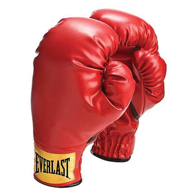 Everlast Youth 8oz Boxing Gloves