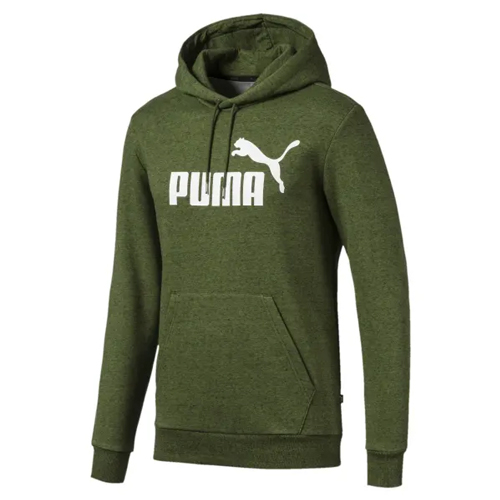 Men's Essentials Fleece Hoodie, Green, swatch