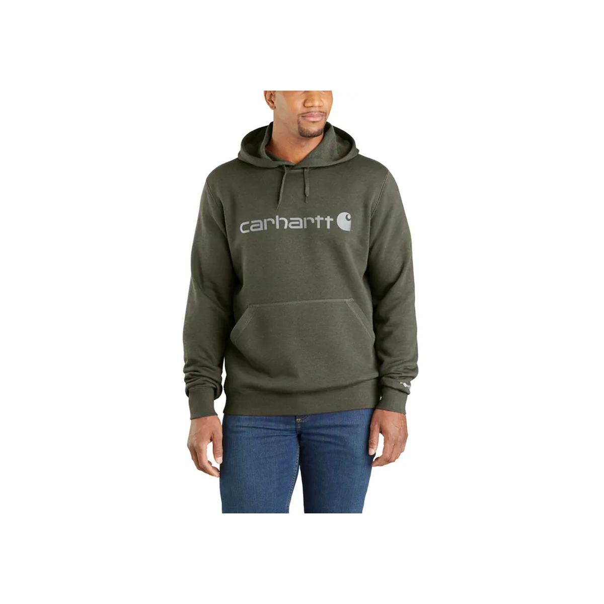 Men's Delmont Signature Graphic Hoodie, Green, swatch