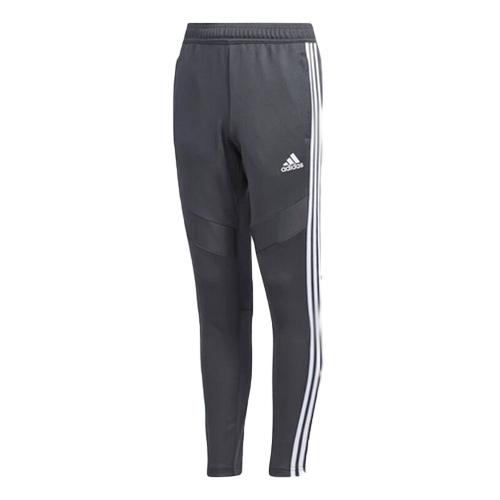 Boys' Soccer Tiro 19 Training Pants, Gray/White, swatch